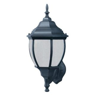Thomas Lighting Medium Outdoor Wall Lantern in Matte Black   Energy