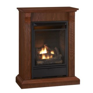World Marketing Tri Fuel Fireplace