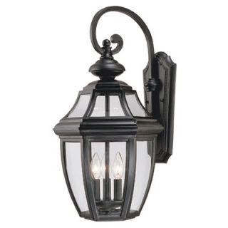 Savoy House Endorado Outdoor Wall Lantern in Black   5 493 BK