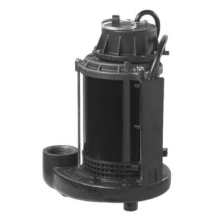 Wayne Water Systems 1/2 HP Switch Genius Switch Technology Sump Pump