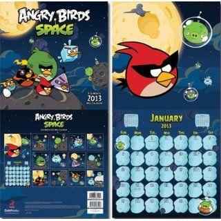 Angry Birds   Space 2013 Wall Calendar