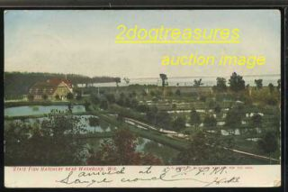 Washburn Wi State Fish Hatchery Chequamegon Bay Ashland Wis Wisconsin