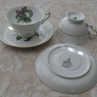 Heinrich Co. Selb Bavaria Germany 2 Teacup & Saucer made for John