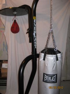 Everlast Heavy Bag and Stand wth Speed Bag