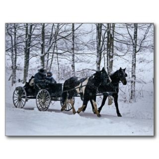 Amish Country Winter Carriage Ride Postcard