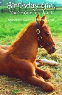 Colt Baby Horse Happy Birthday Greeting Card