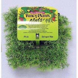 Fancy Plant Mat   Springeri Mat (Catalog Category