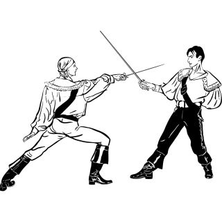 Sword Fight SPRTS and Hobbies Wall Art Decal Wall Stickers Transfers