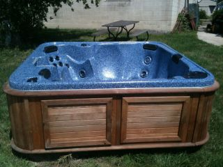 Cub Signature Series Used Hot Tub 28 Jets 5 Person 6 yrs Old