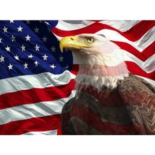 Eagle with American Flag 1 Counted Cross Stitch Pattern