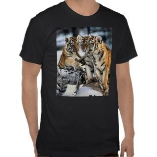 Three Tiger Cubs In Snow Art Gifts Tshirts