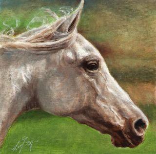 Original Oil Horse Portrait Painting Pony Art Artwork on Canvas