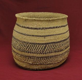Walapai Native American Indian Basket 10 x11 Southwestern Hualapai