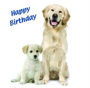 Dog Puppy Birthday Greetings Card Husband Boyfriend Dad Grandad Father