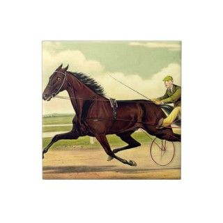TOP Harness Racing Ceramic Tiles