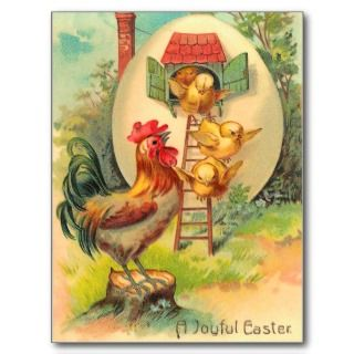 Vintage Easter Chick Postcard