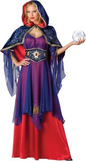 Mystical Sorceress Elite Costume Adult Large New
