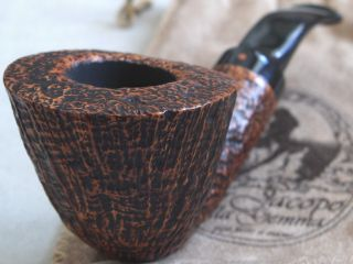 Brand New UNSMOKED Ser Jacopo Hand Made Maxima S1 Grade Early Coral