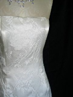Jessica McClintock Ivory Organza Wings Gown Size 8