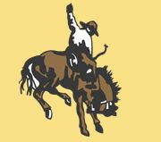 Cowboys Choice Ultra Pad Western Saddle Pad Used