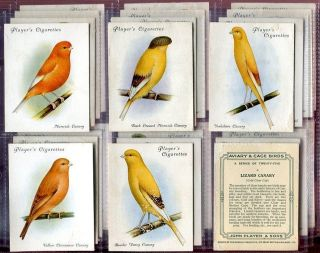 Tobacco Card Set John Player AVIARY CAGE BIRD Canary Parrot etc Lg