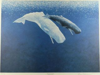 "Richard Ellis Signed Limited Edition Print Sperm ""Whales Journey"" Lithograph"