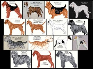 Terrier A K Counted Cross Stitch Patterns