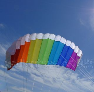 Free shipping power dual kite 2 lines control parafoil kites with 2