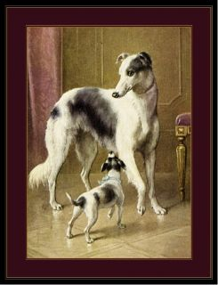 English Print Borzoi Dog Jack Russell Art Picture