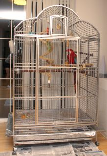 Large Bird Cage Macaw Medical Grade Stainless Steel Truly Amazing