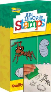 Ant Life Cycle Stamps for Kids Learn About Bugs Life