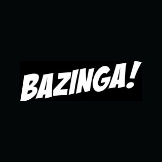 Funny Car Truck Vinyl Decal Laptop Big Bang Humor LOL College
