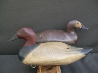 Madison Mitchell Canvasback Pair Vintage Wooden Duck Decoy
