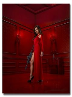 Nikita Maggie Q Sexy Cool Lady Charm Red Dress New Silk Poster 32