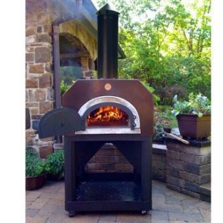 Mario Batali Amici Wood Burning Pizza Oven BBQ Barbecue Back Yard