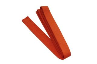 Martial Arts Karate Taekwondo TKD Judo Belt Size 8 Orange