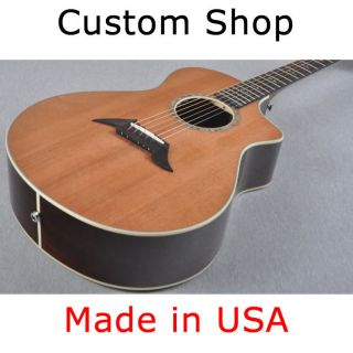 Breedlove Master Class Focus Special Edition Acoustic Electric Guitar