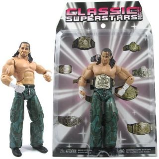 A3 Matt Hardy WWE Wrestling Deluxe Aggression Figure