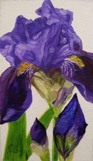 Flower Purple Iris Original Oil Painting K Mccollough