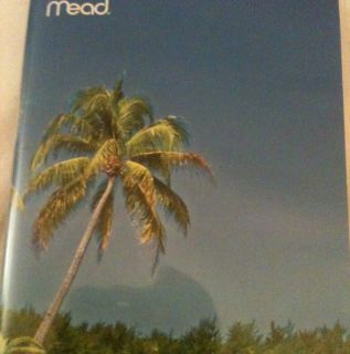 Mead Pocket Diary Planner Daily Deserted Beach 2 Years Back to School