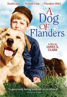 Dog of Flanders DVD, 2009