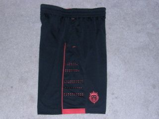 Lebron James Nike basketball shorts