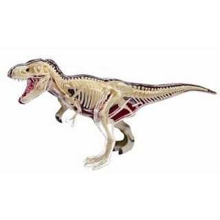 REX ANATOMY MODEL/PUZZLE, 4D Vision Kit #26092 TEDCO SCIENCE TOYS