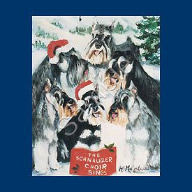 boxed christmas cards in Animals