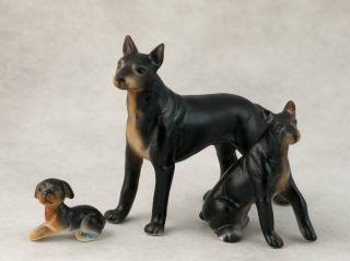Vintage Miniature Bone China Set 3 Doberman Pinscher Dog Figurines