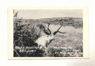 ROUNTAIN RACK JABBIT LEAKY ROOF Butte Montana Vintage RPPC Postcard