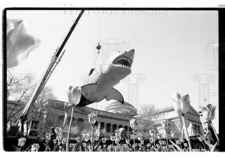 1988 35mm Negs Shark model from Jaws at Museum SI  67