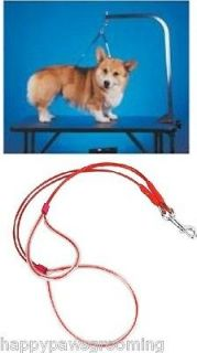 NO SIT LIE DOWN Dog CAT Grooming HEAVYDUTY Cable Loop Holder RESTRAINT