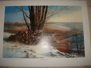 Terry Redlin Breaking Away Ducks Unlimited Special Edition 16/40