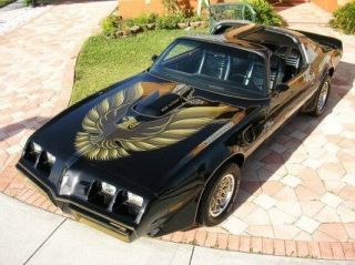 1979 80 Pontiac Trans Am Y84 SE Decal Kit Complete